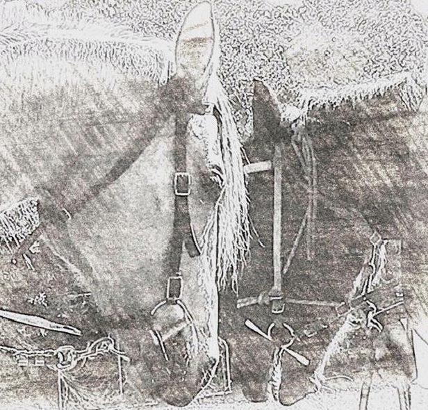 James Island Cowboys